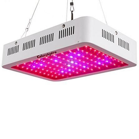 Top 10 LED Grow Lights